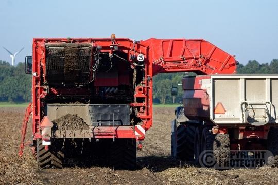 Aardappelrooier