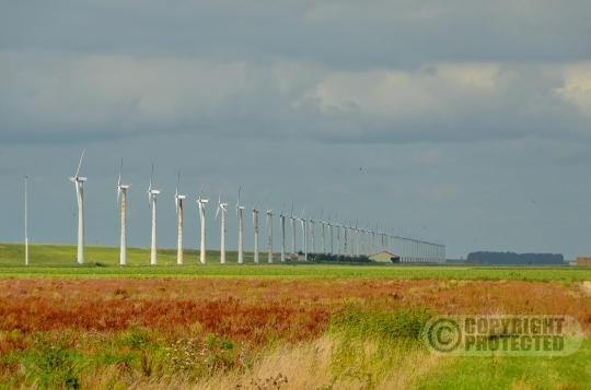 Urk  Windmolens